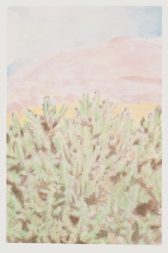 Cactus, Mountain and a Cloud, 2011, Acrylic on paper, 28,5 x 19 cm
