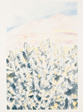 Cactus, Mountain and a Cloud, 2011, Acrylic on paper, 56 x 76 cm