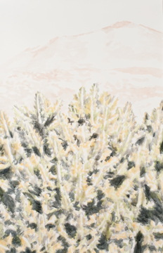 Cactus, Mountain and a Cloud, 2011, Acrylic on paper, 115 x 74,5 cm