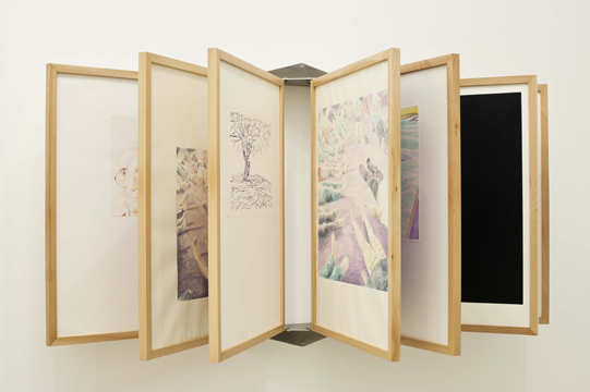 ROYGBIV, 2011, Wooden frame, steel and perspex structure, acrylic on paper, Dimensions variable